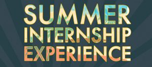 summer training in chandigarh Summer training in Chandigarh | mohali with certification summer training in chandigarh 1 300x132